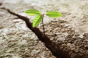 beliefs essential to finances